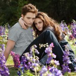 THE TWILIGHT SAGA: BREAKING DAWN-PART 2 07