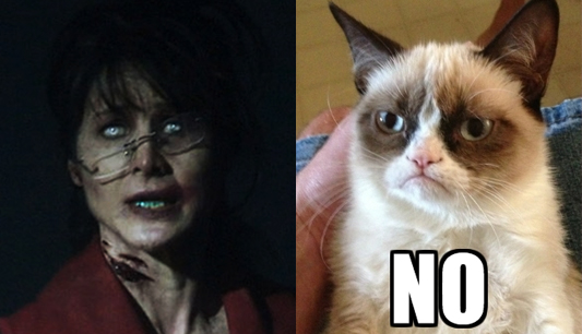 Grumpy Cat hates politics