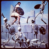 Skeleton Fight