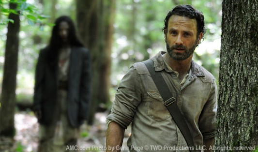 The Walking Dead Season 4 Rick Grimes (Andrew Lincoln)