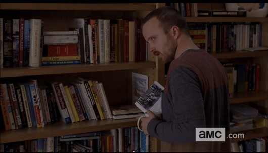 Hank and Marie's Bookshelf On Breaking Bad