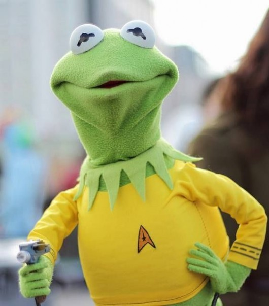 Captain Kermit Of The U.S.S. Enterprise