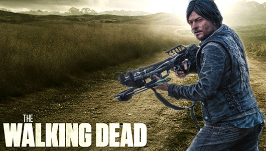Daryl Dixon Walking Dead action figure banner