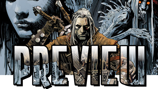The Witcher #1 preview