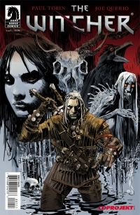 The Witcher #1 cover by Dan Panosian and Dave Johnson