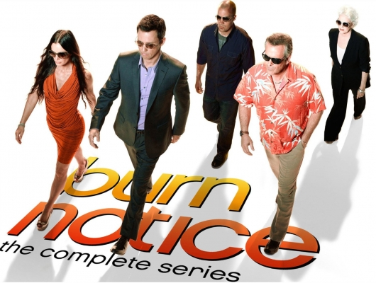 Burn Notice: The Complete Series DVD Box Set