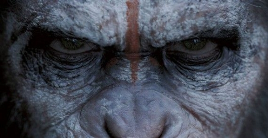Dawn of the Planet of the Apes Movie Review by Adam Frazier