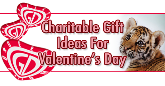 Valentine's Day charity ideas