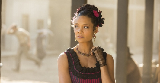 Westworld 108 trace decay Thandie Newton in talks for Star Wars Han Solo