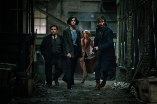 Fantastic Beasts and Where to Find Them header image