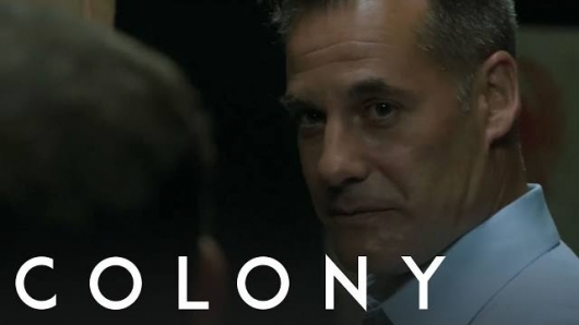 Colony 206 Header
