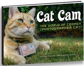 Cat Cam: The World of Cooper the Photographer Cat