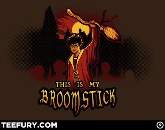 Harry Potter - This Is My Broomstick