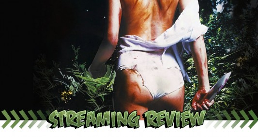 Streaming Review: I Spit On Your Grave