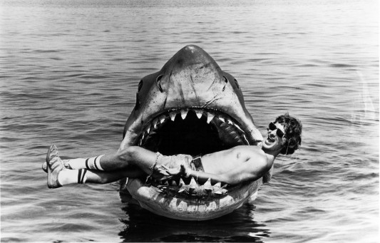 Steven Spielberg Jaws Image