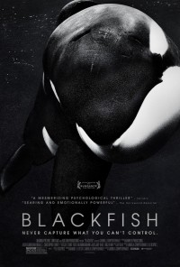 Blackfish movie poster