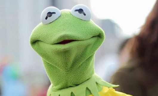 Kermit The Frog Star Trek