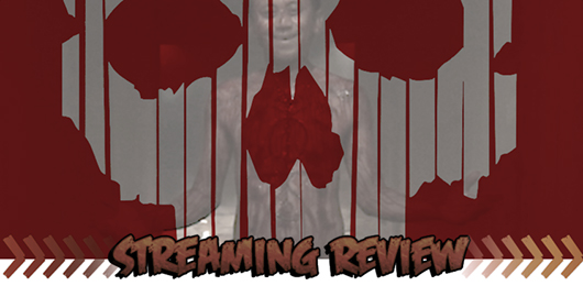 V/H/S/2 Streaming Review Banner