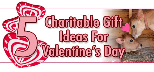 Valentine's Day 2014: Last-Minute Charitable Gift Ideas