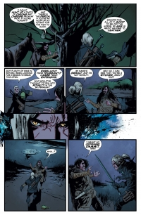 The Witcher #1, page 3