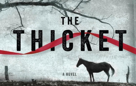 The Thicket Novel