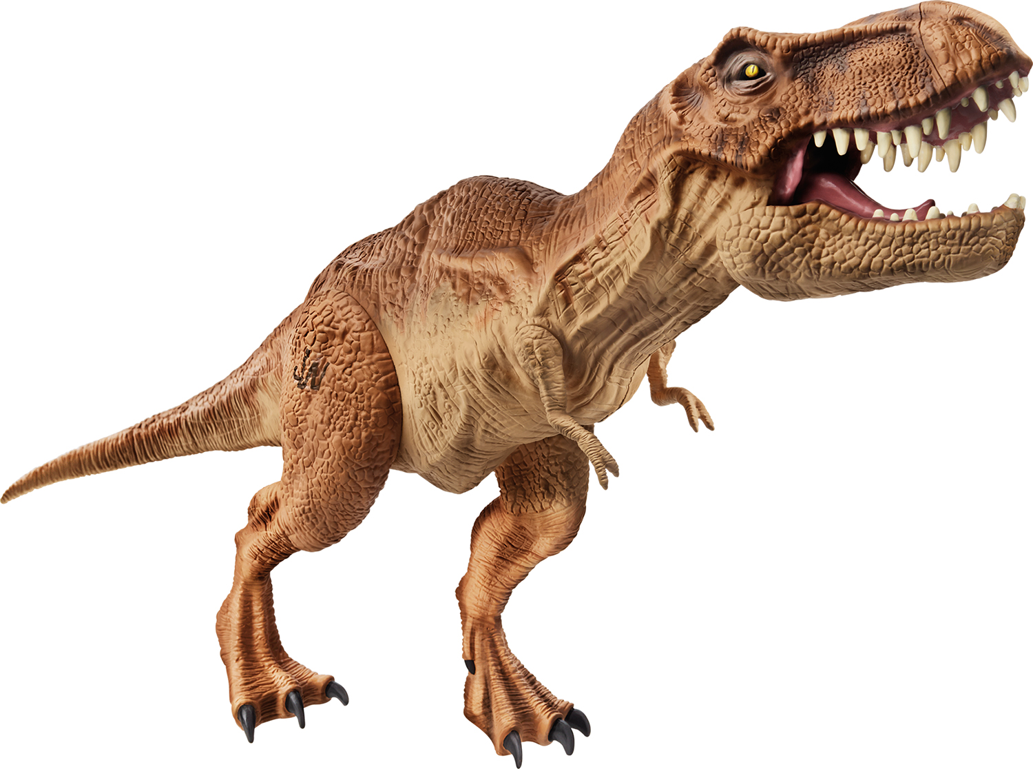 characteristics of tyrannosaurus rex The tyrannosaurus rex, or t-rex for short, was a prehistoric animal this means  that it lived before  physical characteristics if the jaws and teeth weren't.