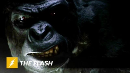 The Flash Gorilla Grodd