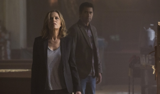 AMC The Walking Dead Companion Series Kim Dickens Cliff Curtis Cobalt