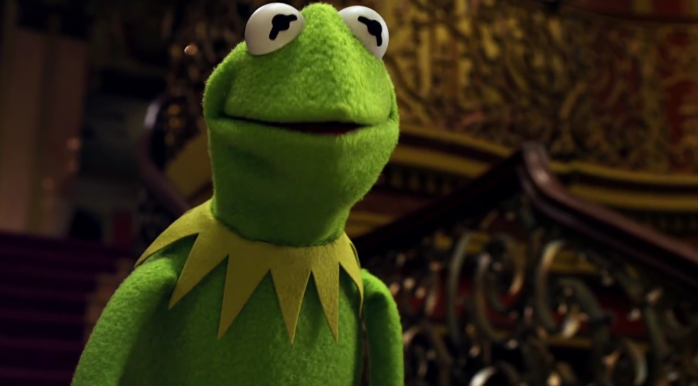 Real Kermit The Frog Discovered In Costa Rica - Real life kermit the frog discovered in costa rica