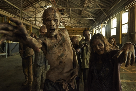 The Walking Dead Season 5 dvd Gallery 01