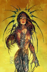 Witchblade #150, cover D