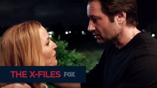The X-Files Miniseries Scully and Mulder