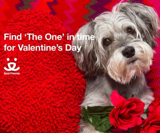 Best Friends Animal Sanctuary Valentine's Day 2016