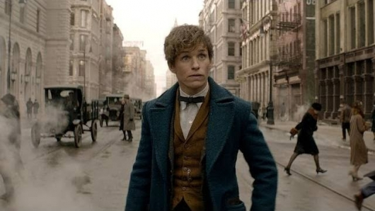 Fantastic Beasts and Where to Find Them Eddie Redmayne