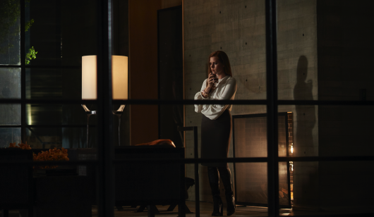Nocturnal Animals starring Amy Adams