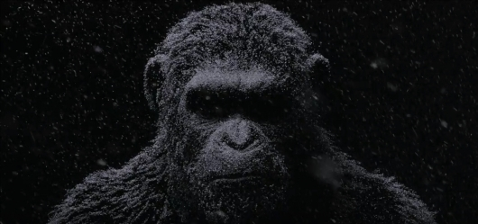 War For The Planet Of The Apes header image