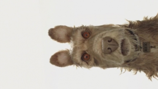 Isle of Dogs Header