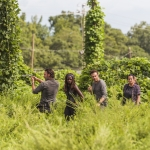 Andrew Lincoln as Rick Grimes, Danai Gurira as Michonne, Ross Marquand as Aaron, Alanna Masterson as Tara Chambler - The Walking Dead, Season 7, Episode 9