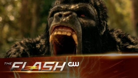 The Flash 313 Header