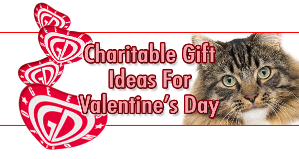 Valentine' Day charitable gift ideas