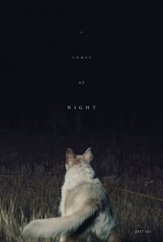 It Comes at Night Poster #2