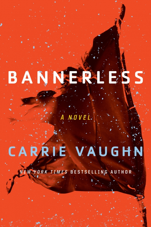 Bannerless book cover