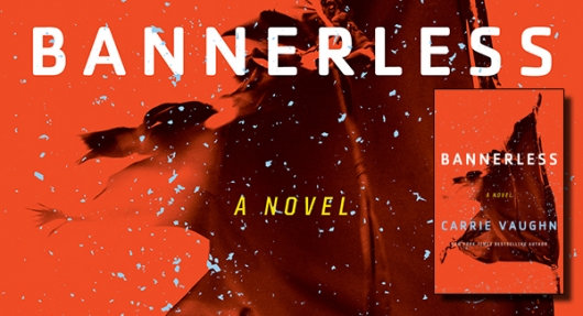 Bannerless book cover banner