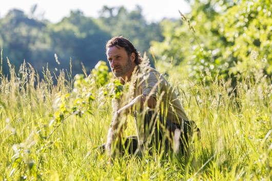 The Walking Dead 8.1 Andrew Lincoln