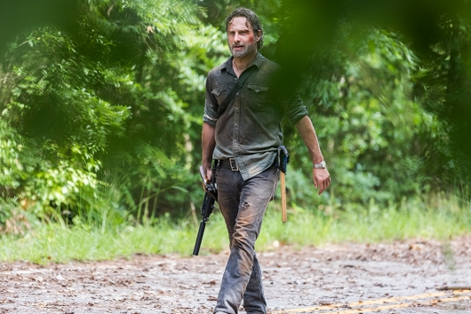 Walking Dead 8.6 Andrew Lincoln
