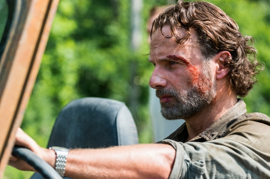 The Walking Dead 8.4 Rick Grimes