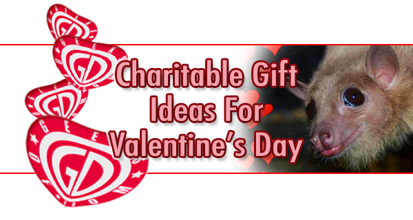 Valentine's Day charitable gift ideas
