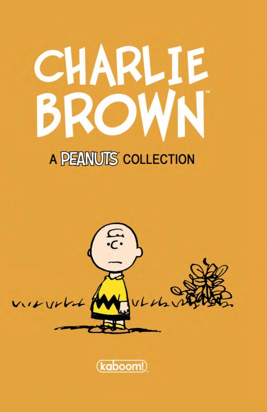 Charlie Brown Hardcover