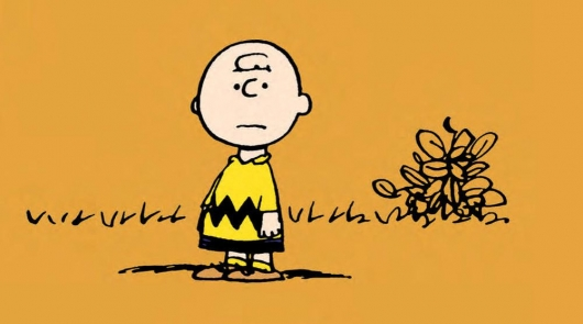 Charlie Brown Hardcover header