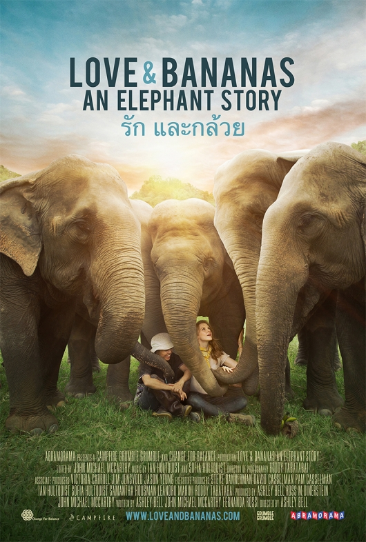 Love and Bananas: An Elephant Story poster